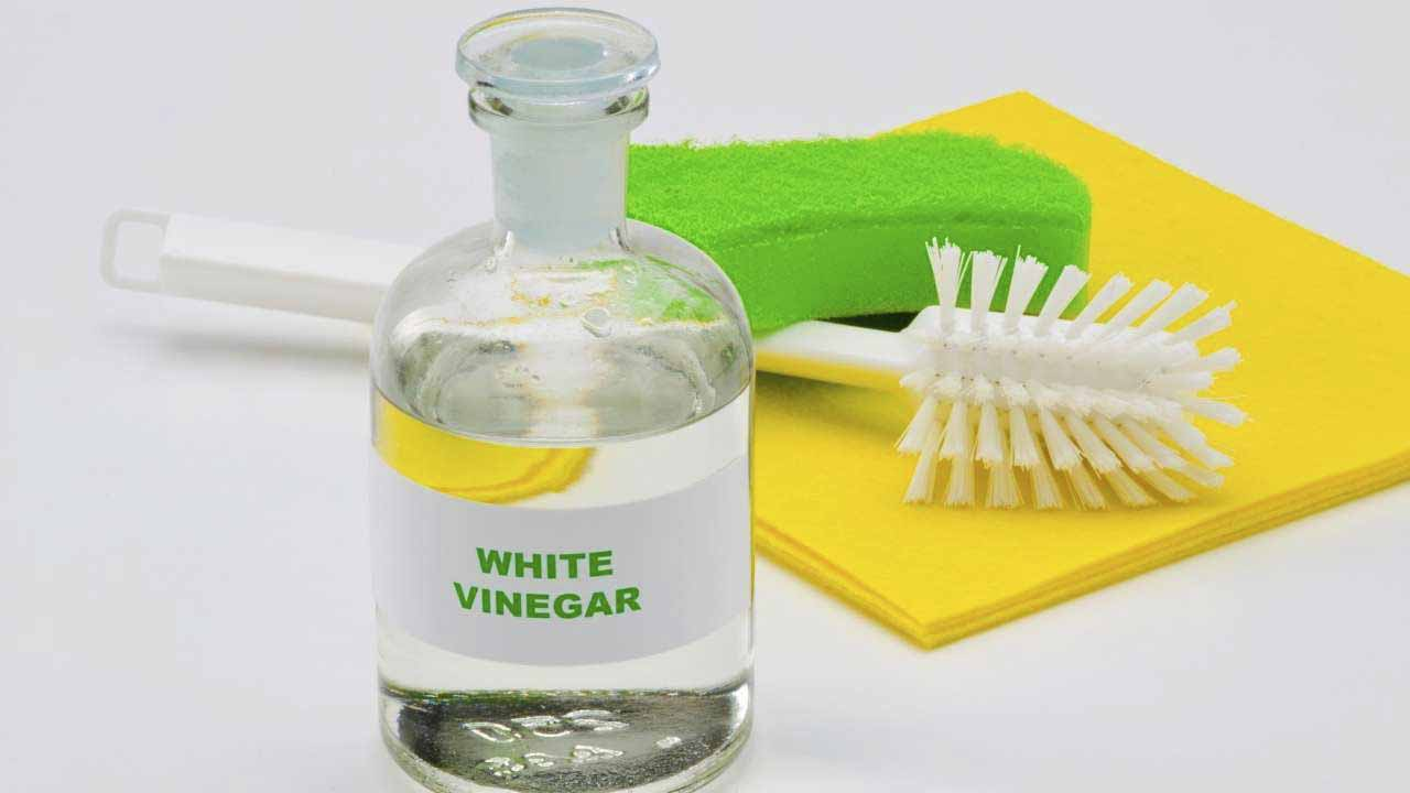Clean a toaster oven with white vinegar