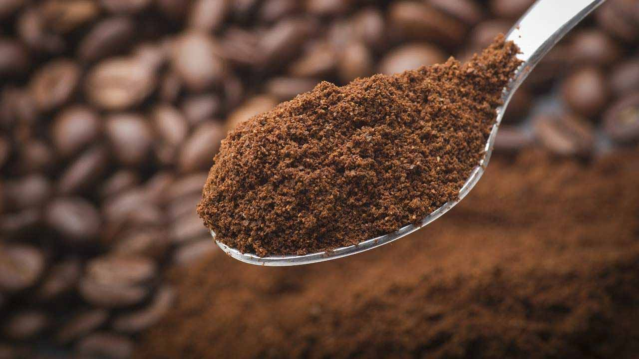 Clean and deodorize a toaster oven with coffee powder